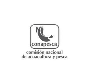 CONAPSECA